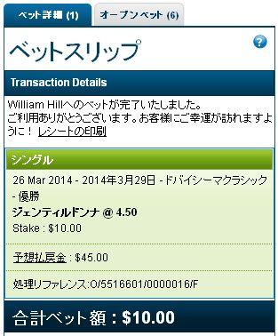 ドバイシーマクラシック2014馬券購入.jpg