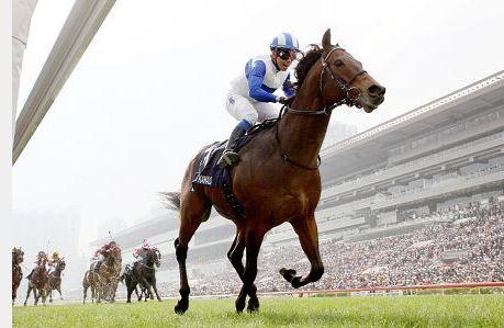 ロードカナロア年度代表馬.jpg
