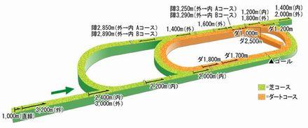 新潟コース立体図.jpg